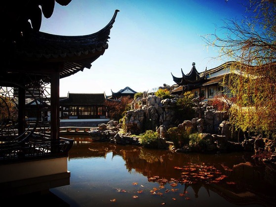 Dunedin Chinese Garden Overview via Instagram
