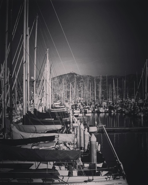 Sailboats in Ventura Harbor in Black and White  via Instagram