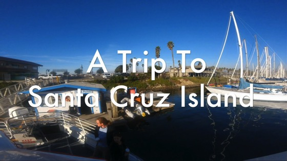 A Trip to Santa Cruz Island - A Moment in Los Angeles 5