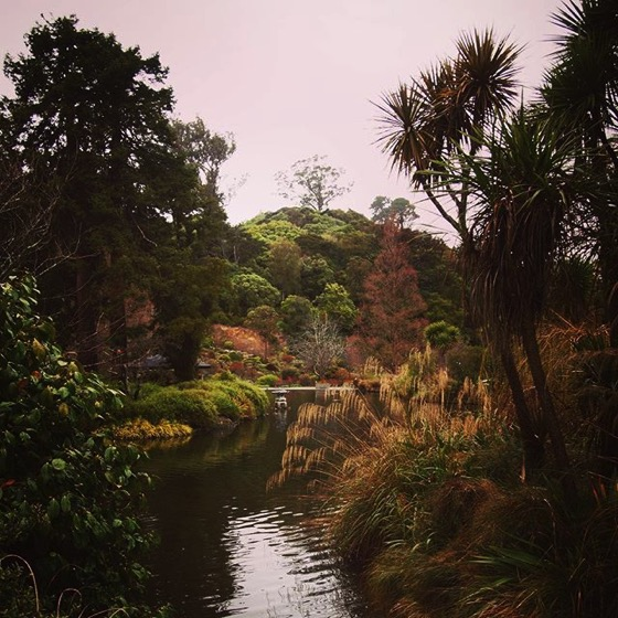 Dunedin Botanic Garden, Dunedin, New Zealand via Instagram
