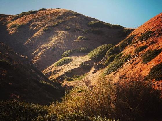 A Scene from Santa Cruz Island 2 via Instagram