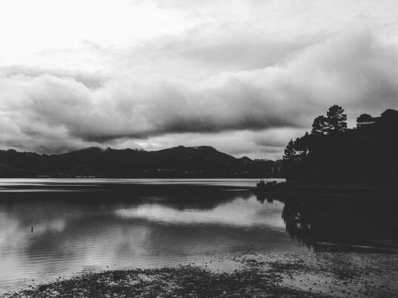Otago Harbor, Dunedin, New Zealand via Instagram