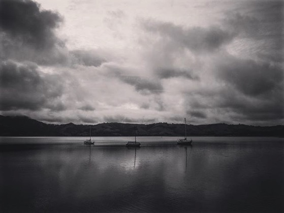 Otago Harbor, Dunedin, New Zealand via My Instagram