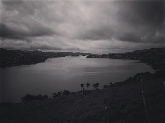 View of Otago Harbor, Dunedin, New Zealand via Instagram