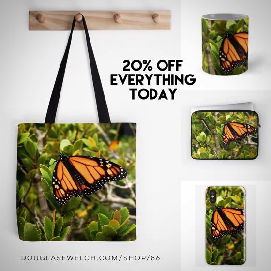 "20% OFF Everything Today! - Get These Amazing ""Butterfly in Spring"" Pillows, iPhone Cases, Mugs and Much More!"