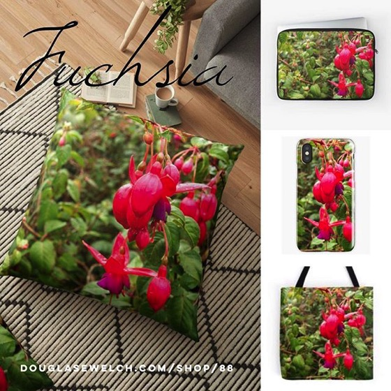 "Get These Vibrant ""Fuchsia Flowers"" Pillows, Totes, iPhone Cases, Mugs and Much More!"