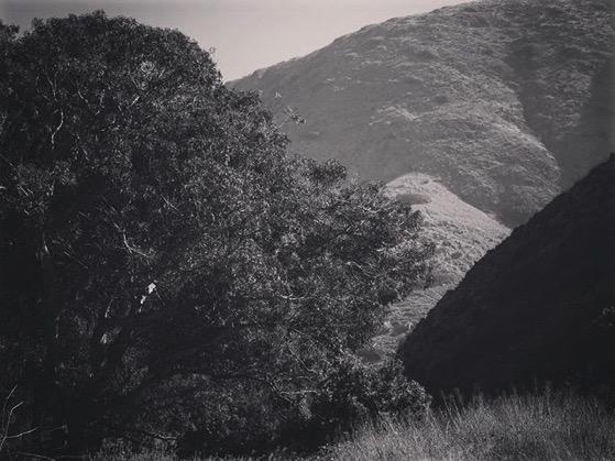 A Scene from Santa Cruz Island via My Instagram
