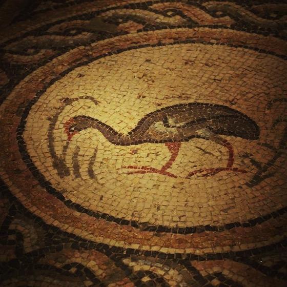 Roman Ibis Mosaic Detail