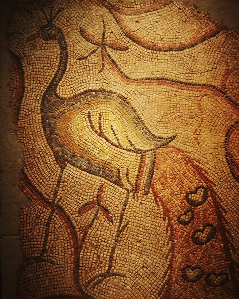 Roman Peacock Mosaic Detail via My Instagram