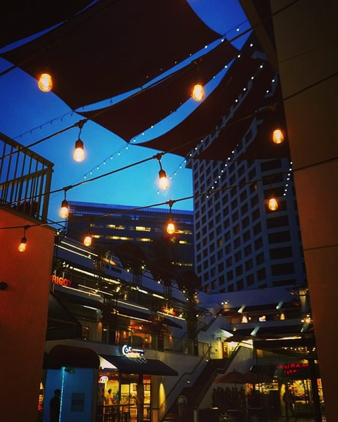 Little Tokyo at Night via My Instagram
