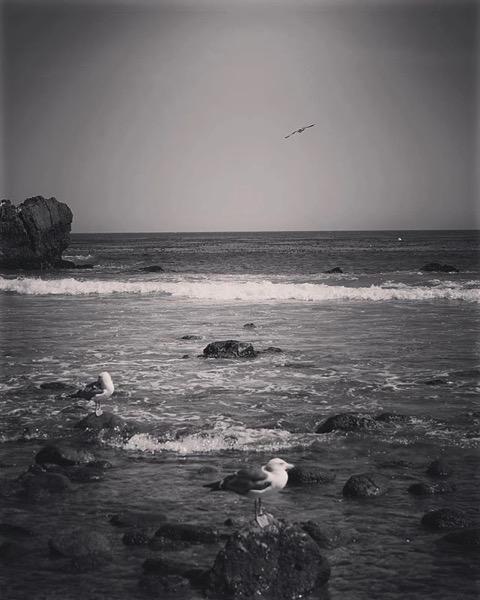 Leo Carillo State Park and Beach via My Instagram