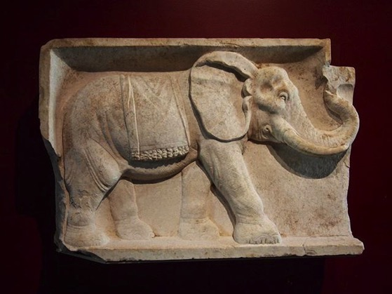 Roman Elephant Carving, Getty Villa via My Instagram