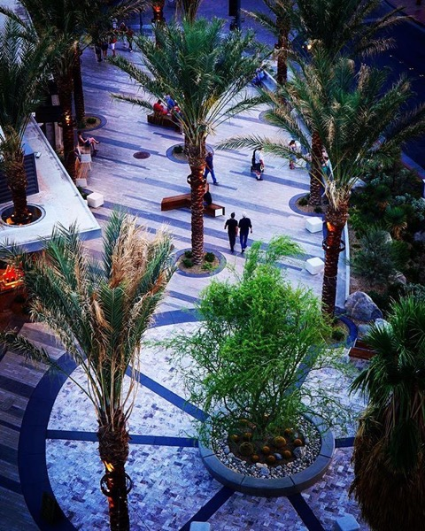 New Plaza in Downtown Palm Springs from the Rowan Hotel -- Follow Me On Instagram!