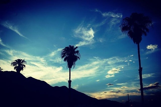 Palms, Sky and Mountains from Downtown Palm Springs from My Instagram