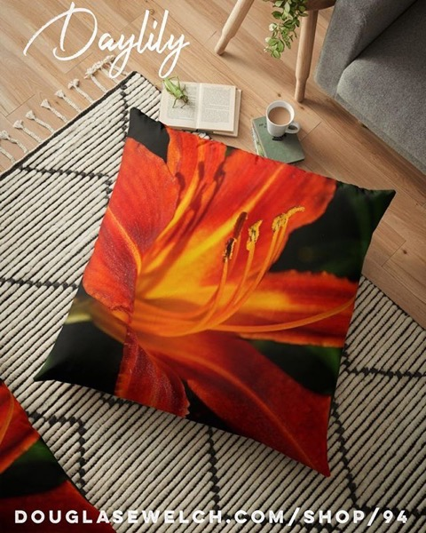 Order these Red Daylily Pillows, Cards, Cases, Totes and More!
