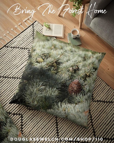 Bring The Forest Home…Fir Tree Pillows, Totes, iPhone Cases, Clothing and more!