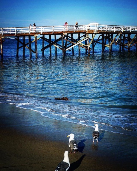 Paradise Cove Beach and Pier -- Follow Me On Instagram