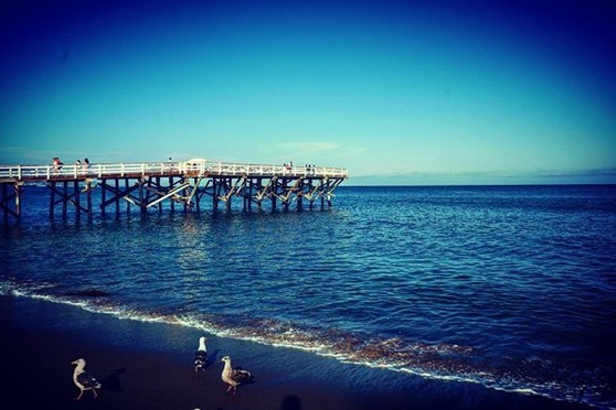 Paradise Cove Beach and Pier