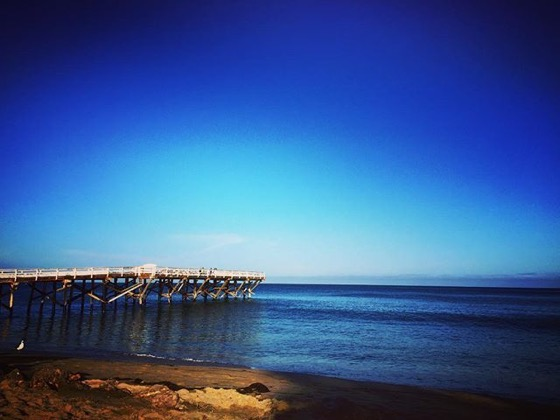 My Los Angeles 68 - Paradise Cove Beach and Pier -- Follow Me On Instagram!