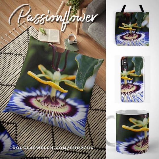 Get These Striking Passionflower Floor Pillows, Totes, iPhone Cases, and more!