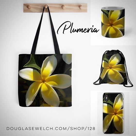 Plumeria Blossoms Shine in the Sun on Totes, Tees, Mugs, Bags and Much More!