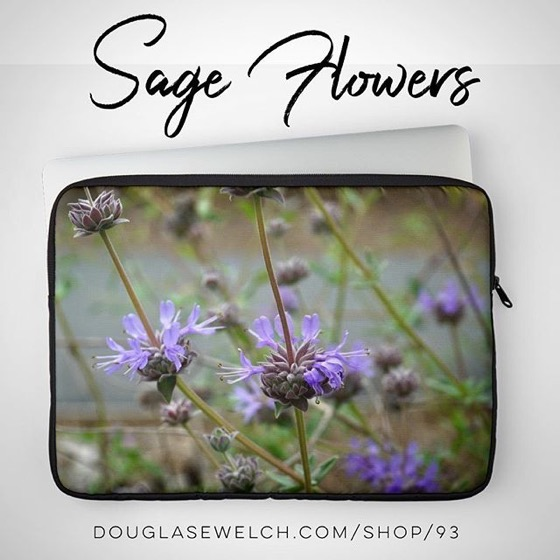 Sage Flowers from the San Fernando Valley of California Laptop Sleeves and much more!