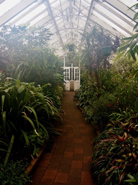 The Tropical House In Winter, Dunedin Botanic Garden