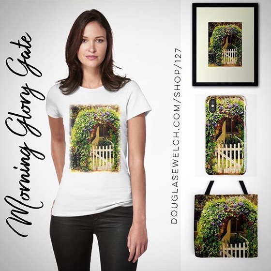 Join Me In The Cottage Garden with these Watercolor Morning Glory Gate Tees, iPhone Cases, Cards and Much More!