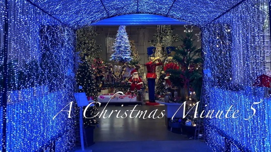A Christmas Minute 5 - Aldik Home Decorations [Video]
