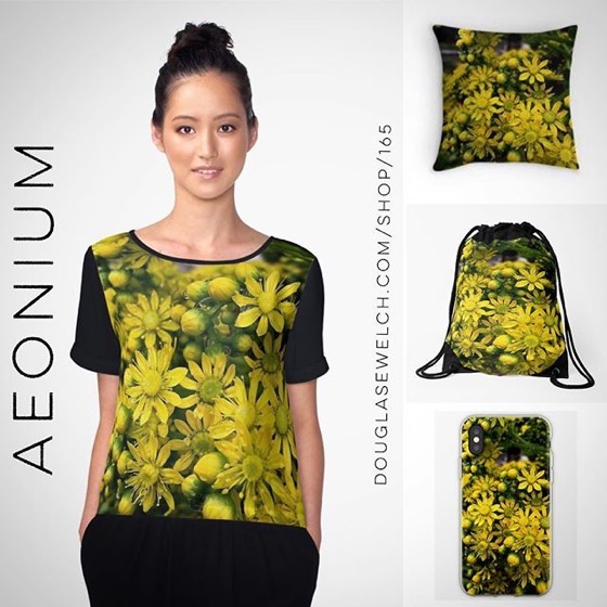 Spring is coming - !Brighten Your Day With These Aeonium Flowers Tops, Bags, iPhone Covers and More!