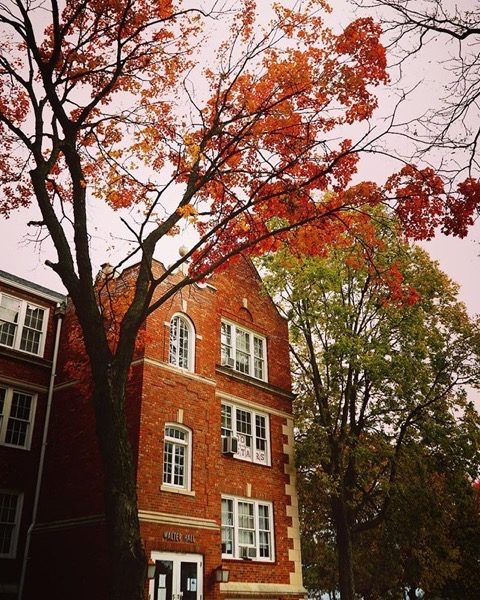 Autumn Color on a Historic Campus via Instagram