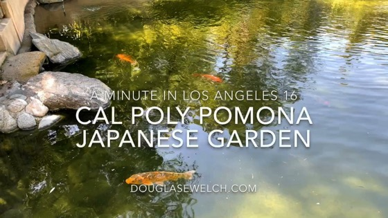 Scene from the Cal Poly Pomona Japanese Garden - A Minute in Los Angeles 17