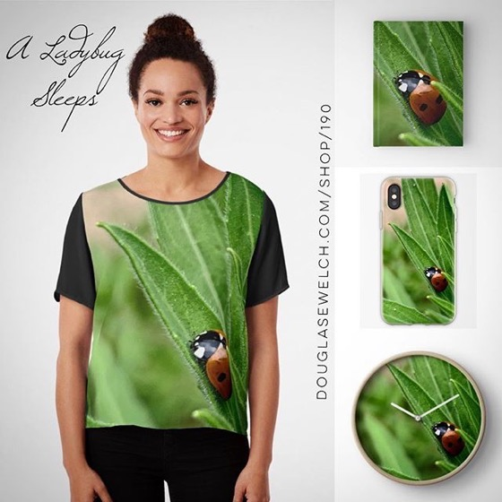 NEW DESIGN! - A Ladybug Sleeps -- Get This Lovely Ladybug on Floor Pillows, Totes, Phone Cases And More! [For Sale]