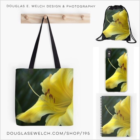 Get These Shining Yellow Daylilys on iPhone Cases, Totes, Notebooks and More!
