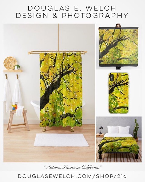 Get ready for your Autumn Interior with these shower curtains and More From Douglas E. Welch Design and Photography [For Sale]