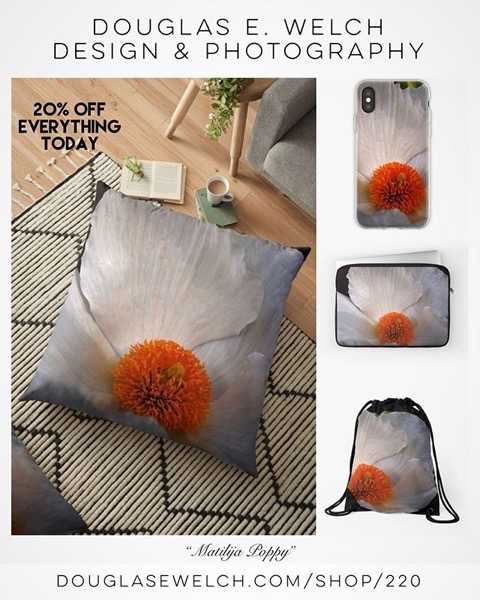 20% OFF Everything Today! — Get These Matilija Poppy Products and More From Douglas E. Welch Design and Photography [For Sale]