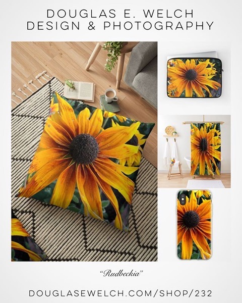 Brighten Your Days With These Rudbeckia Pillows and More From Douglas E. Welch Design and Photography [For Sale]