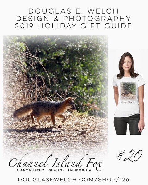 Holiday Gift Guide 2019 20: Channel Island Fox Tees and More! [For Sale]