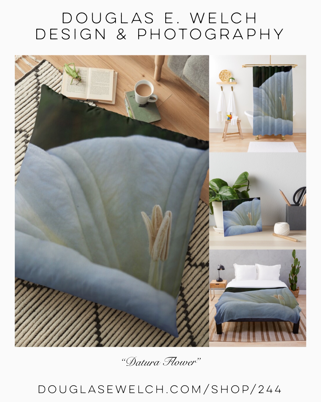 Get These Datura Flowers on Shower Curtains, Pillows, and More From Douglas E. Welch Design and Photography [For Sale]