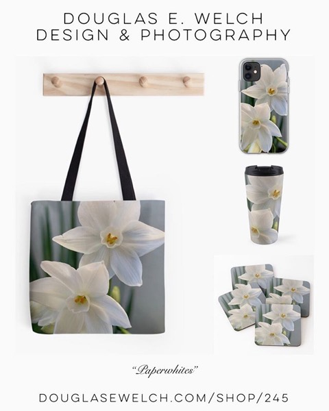 NEW DESIGN - Paperwhites 2019 on Totes, Coasters, and More From Douglas E. Welch Design and Photography [For Sale]</p>  <p>Includes throw blankets, duvet covers, pillows, hoodies, tees, and much more!