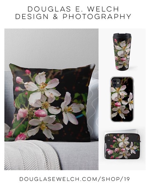 It's Apple Blossom Time Year Round With These Products Exclusively From Douglas E. Welch Design and Photography [For Sale]