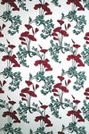 Red Poppies Vintage Victorian Wallpaper