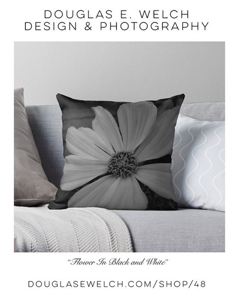"Brighten Your Home With These ""Flower in Black and White"" Pillows and More! [For Sale]"