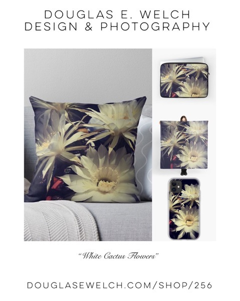 "Bring The Outdoors In With These ""White Cactus Flower"" Pillows and More! [For Sale]"