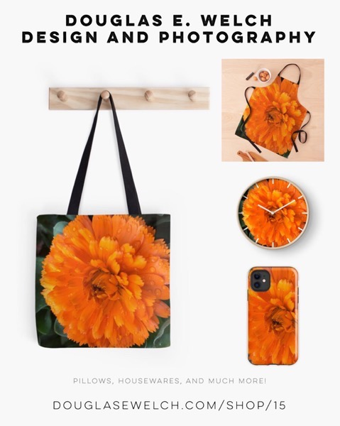 Raindrops On Marigolds - Products Exclusively From Douglas E. Welch Design and Photography [For Sale]