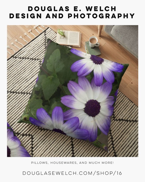 Dress Up With A Splash Of White On Purple With These  Pillows and More Exclusively From Douglas E. Welch Design and Photography [For Sale]