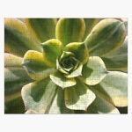 Ur jigsaw puzzle 252 piece flatlay square product 600x600 bg f8f8f8  9