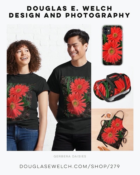 New Design: Gerbera Daisies Tees and More Exclusively From Douglas E. Welch Design and Photography [For Sale]