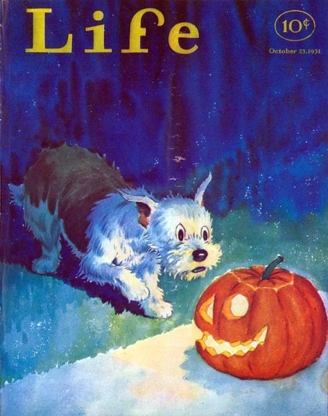 Halloween 2020 – 55 in a series – Dog and Jack-o-Lantern from Life Magazine (1931)