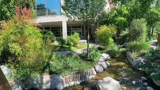 The Japanese Garden At Cal Poly Pomona (Panoramic Photo)